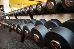Både fria vikter och maskiner
